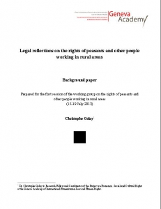 Cover of Legal reflections on the rights of peasants and other people  working in rural areas